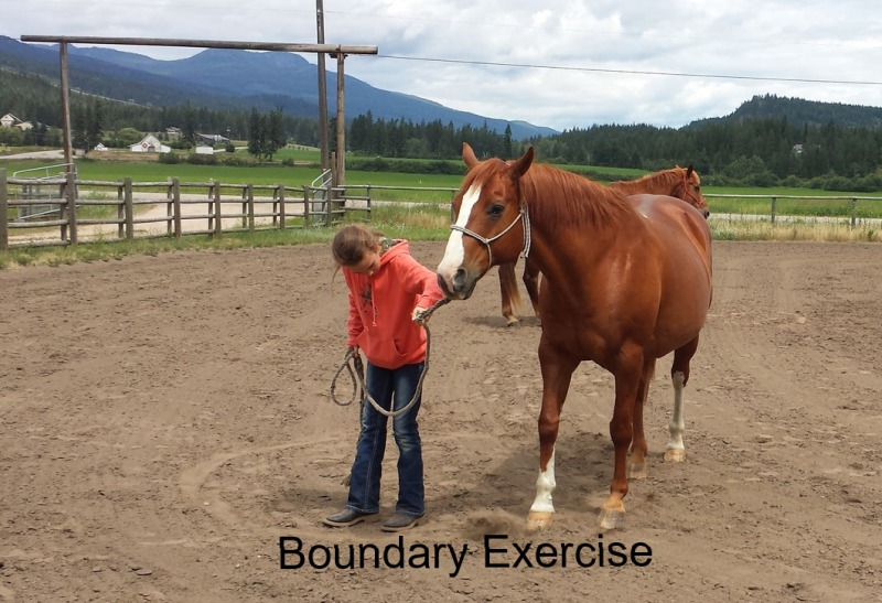 "Student performing ""Boundary Exercise"" with Chief."